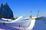 credit: FIS Freestyle Skiing